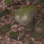 Piedra de Sacrificio 4