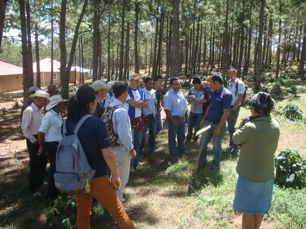 Visita COSAGUAL a Finca Santa Elena
