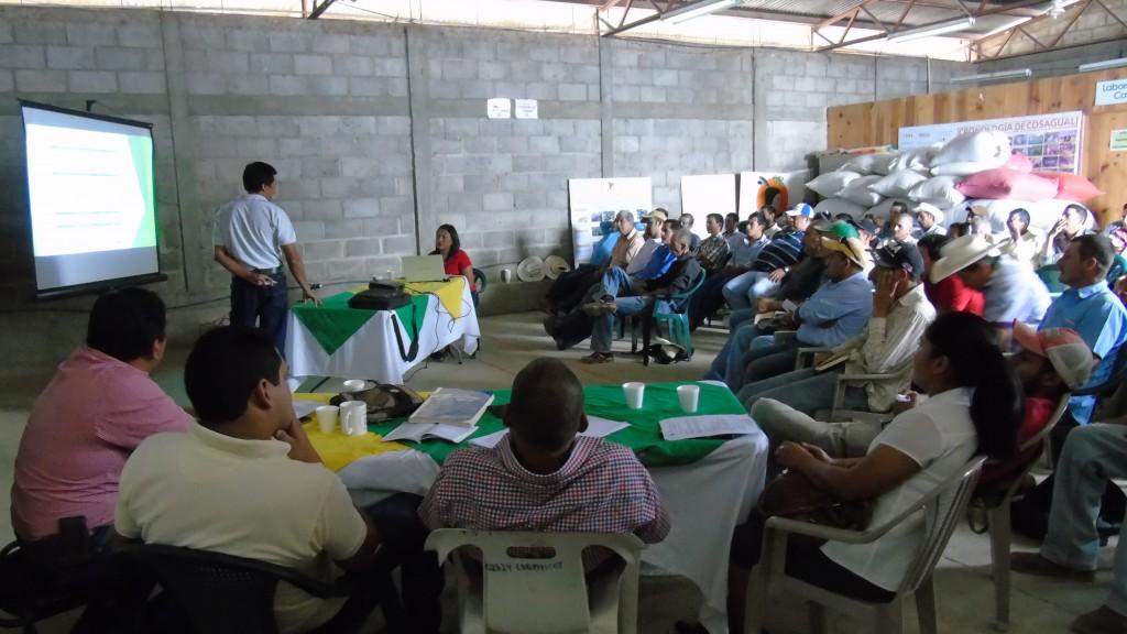 Asamblea 2015-2016